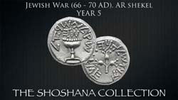 The Shoshana Collection of Judaean Coins Part 2